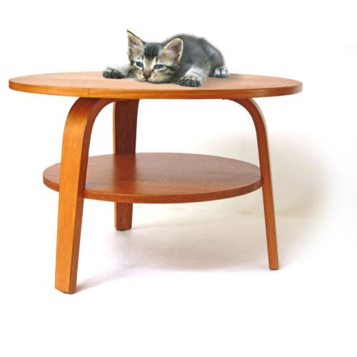 Cees Braakman Pastoe Oak series plywood coffee table